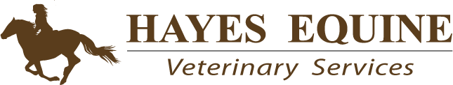 Hayes Equine Veterinary Services
