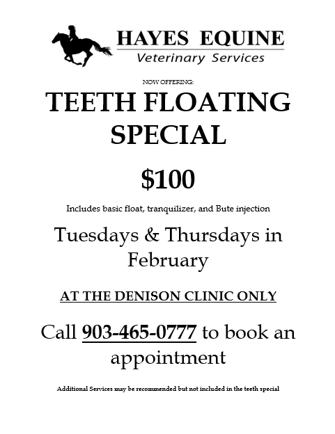 February Teeth Special!